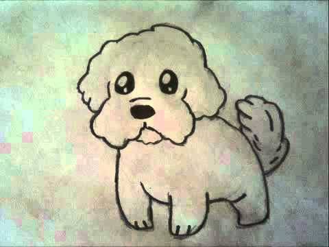 How To Draw A Maltese Puppy