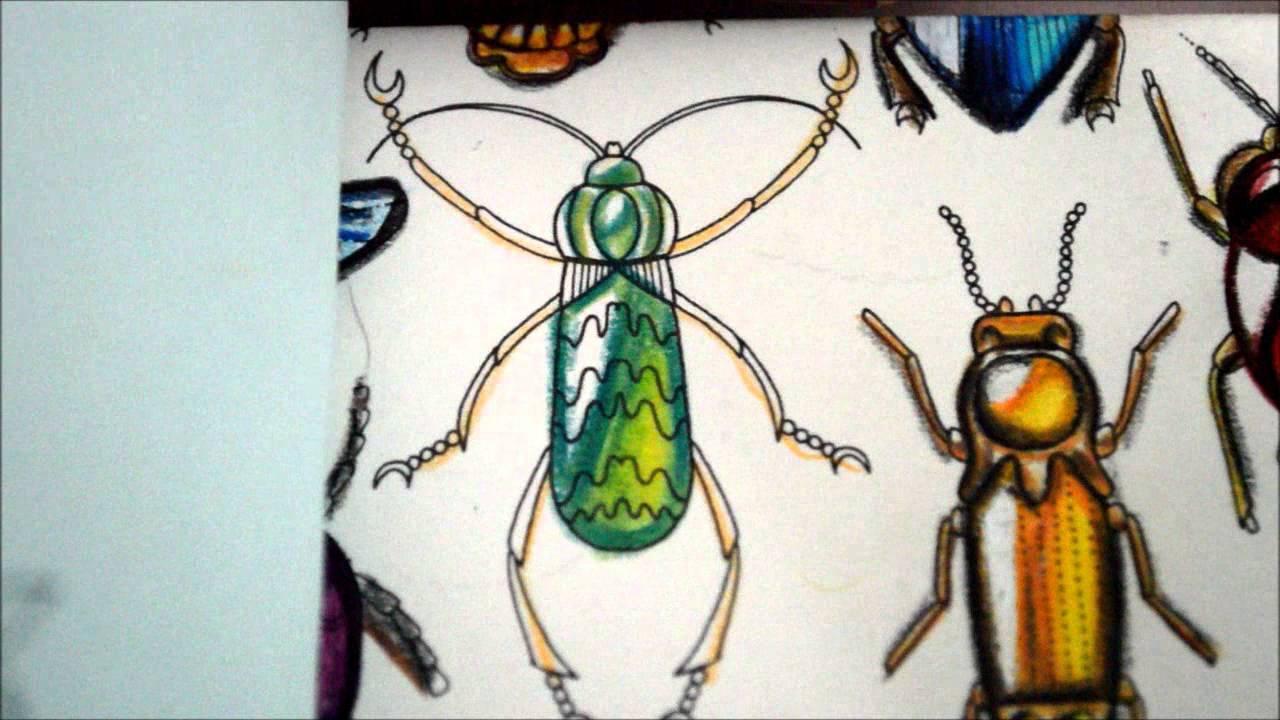 Tutorial Secret Garden Bichos Joya 7 Johanna Basford Colouring Book