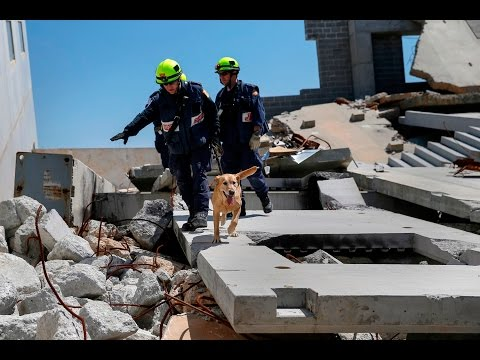 California may invest in early earthquake warning system
