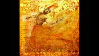 Mohammad Reza Lotfi: Mystery of Love (Persian Classical Music)