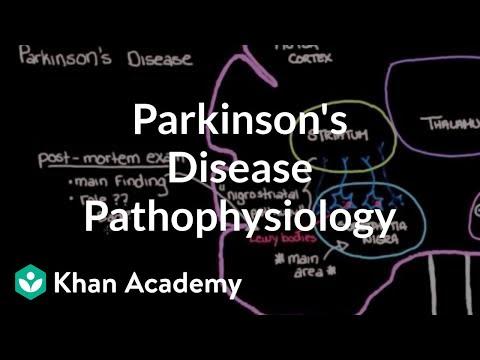 Putting it all together - Pathophysiology of Parkinson's disease | NCLEX-RN | Khan Academy