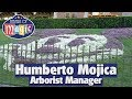 Humberto Mojica | Arborist Manager at Disneyland Resort | Masters of Magic