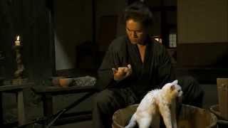 貓侍第三集, 北村一輝飾演的武士斑目幫長跳蚤的貓, 小玉洗澡的段落, 好萌 .