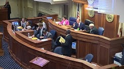 Alabama Senate abortion bill debate, vote