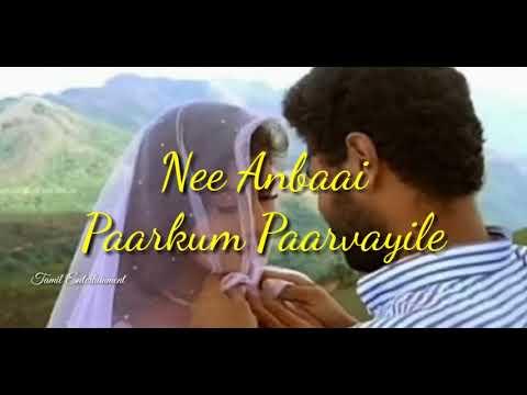 Kannukulle Unnai Vaithen Song   Whatsapp Status   Love Song   Pennin Manathai Th
