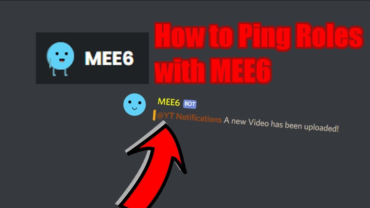 How To Mention Roles With Mee6 Discord Bot Tutorial Youtube