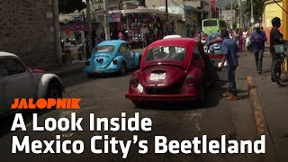 A Look Inside Mexico City's Beetleland