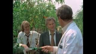 The Sweeney Season 3 Episode 6 Bad Apple