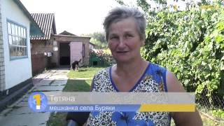 Бюджет Новосибирска недополучает деньги за аренду муниципальной земли