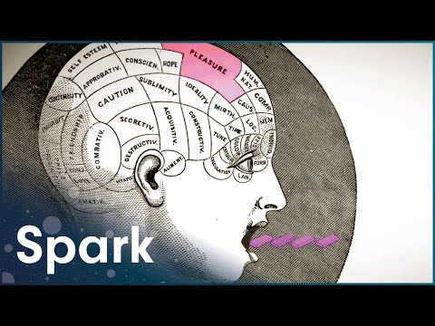 Why Humans Chew Gum | Dark Side Of The Chew | Spark