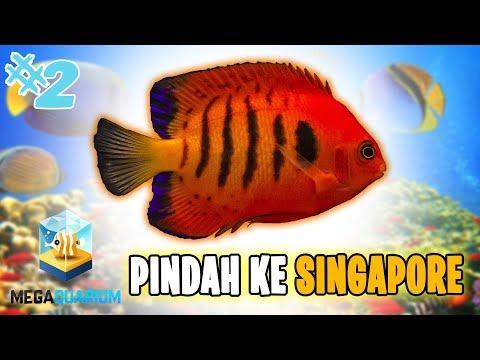 SEA WORLD BANDUNG BERES x LANJUT KE SiNGAPORE 😍