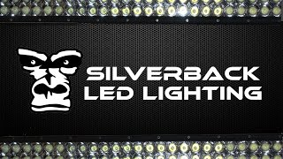 Introducing Silverback LED Lighting