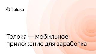 Яндекс.Толока (приложение для заработка на смартфоне Андроид): что по чём?