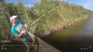 Рыбалка в Астрахани. Поехали на судака, а наловили сазана.