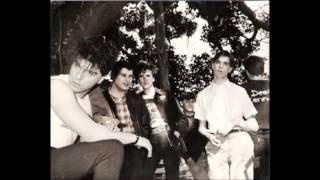 DANZA INVISIBLE---DIARIO OCULTO  (DIRECTO) 28-1-1983.