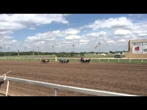Donkey Race at Remington Park