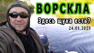 Рыбалка на реке Ворскла Много поклевок щуки правда мелкой Рыбалка_2020