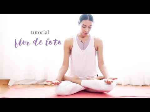 Tutorial:Flor de LOTO (PADMASANA)| Brenda Yoga