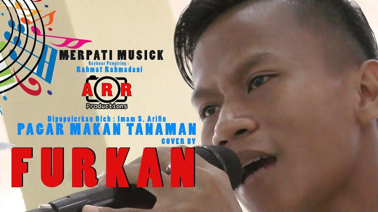 FURKAN COVER PAGAR MAKAN TANAMAN   YouTube