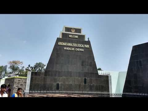 Arignar Anna Zoological Park Vandalur Zoo Chennai : Watch LIVE on website Live Streaming available
