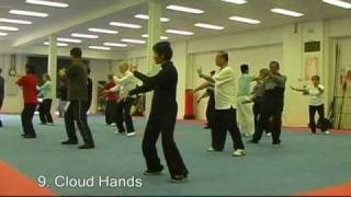 tai chi beginners short form traditional yang style