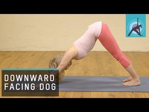 Downward Facing Dog pose / Adho Mukha Svanasana Yoga