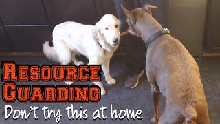 Resource Guarding//Using Bosco to teach