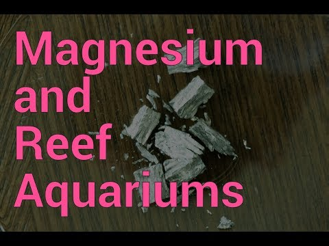 Magnesium & Reef Aquariums
