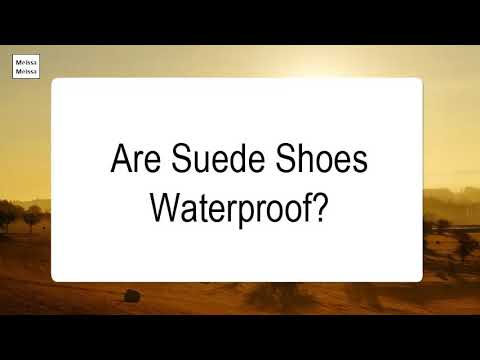 Are Suede Shoes Waterproof
