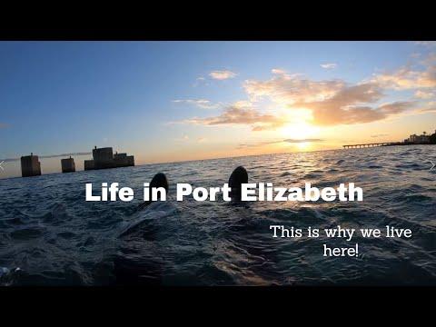A Day in Port Elizabeth | South Africa