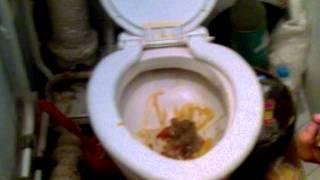 Спалил туалет