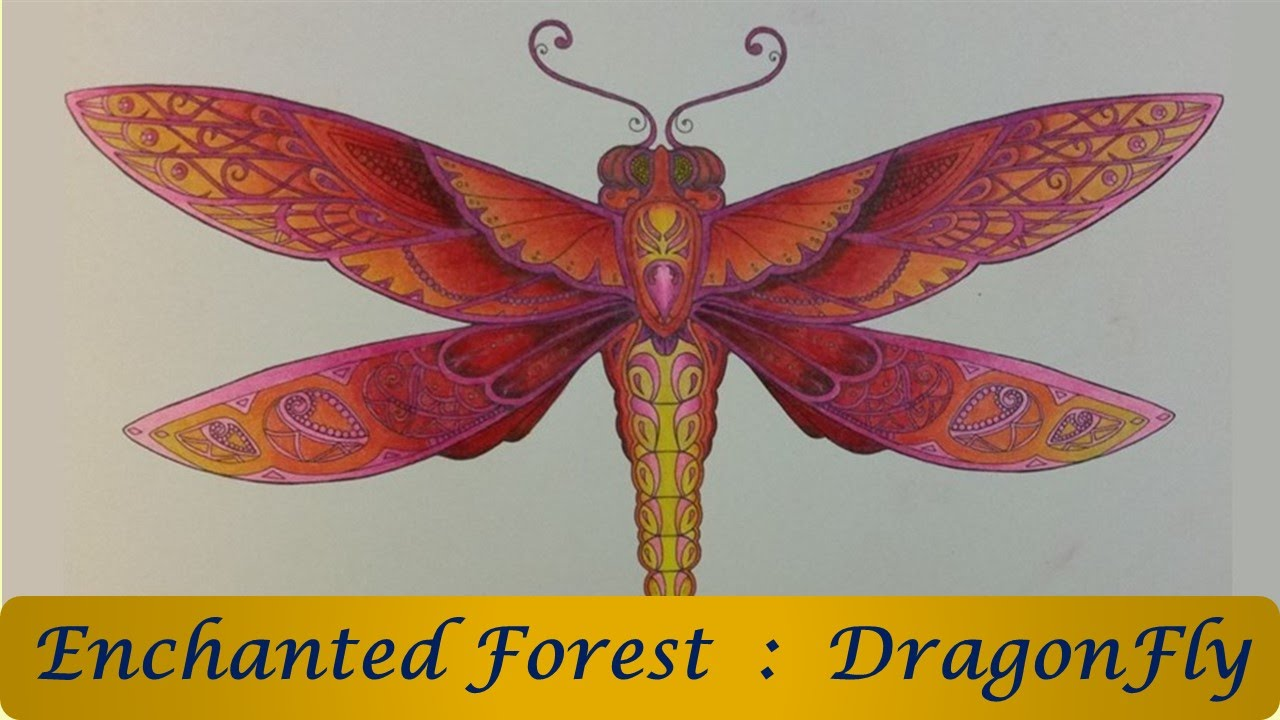 Enchanted forest coloring book youtube - Speed Coloring Dragonfly Enchanted Forest Coloring Book