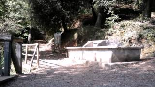 Monte di Portofino tour