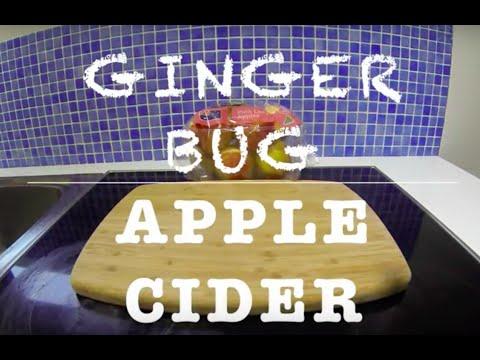Ginger Bug Apple Cider