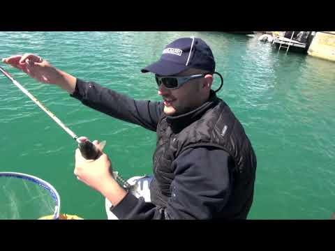 Tecnica di Pesca ai Muggini con la Canna Fissa - Colmic