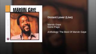 Distant Lover (Live)