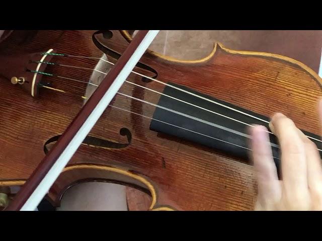 Ifstrings Master Build deluxe Wood #351 Guarneri del Gesu 1741