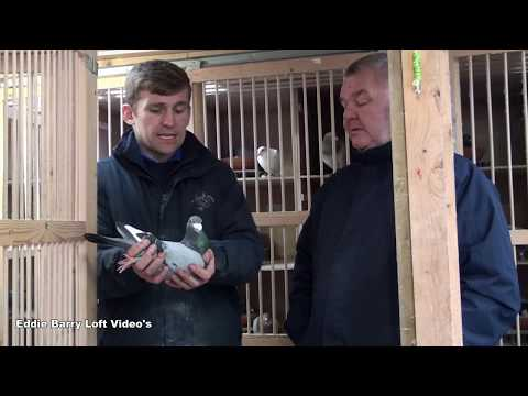 Sean Hunt & Family Pre-Auction Blackpool Video 2019