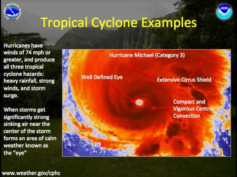Anatomy of a Tropical Cyclone