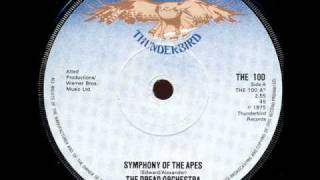 THE DREAD ORCHESTRA / SYMPHONY OF THE APES / 7""