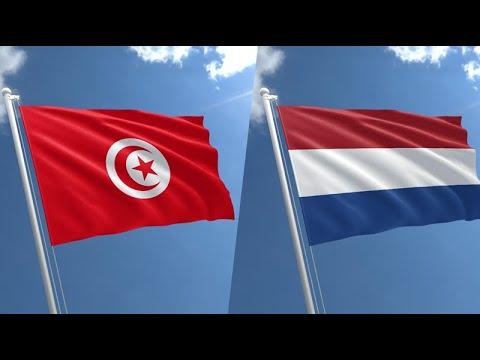 هولندا ترفع منع السفر إلى تونس  - نشر قبل 4 ساعة