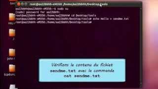TCP Covert - Audit Informatique