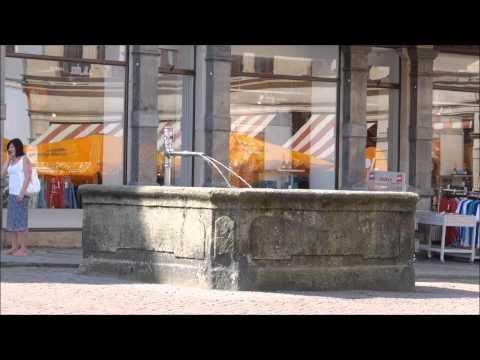 Brunnen und Wassertröge in Pirna