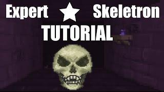 ★ Expert Tutorial: Skeletron // Terraria 1.3