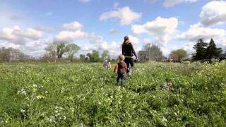 Book Family Farm Chico California Kickstarter Film by TréCreative