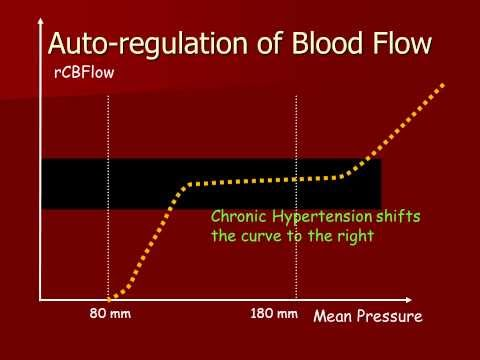 Autoregulation of Cerebral Blood