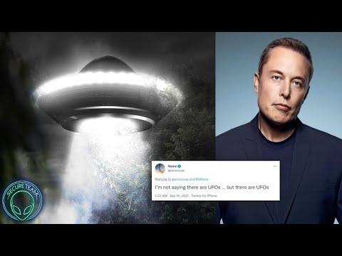 """""""ONLINE FRENZY"""" After UFO Tweet By Elon Musk.."""