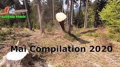 Mai Compilation 2020