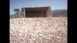 Most alien-looking world - Socotra, Yemen