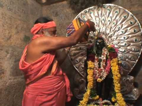 Nadu Palani Muruga Abhisheka